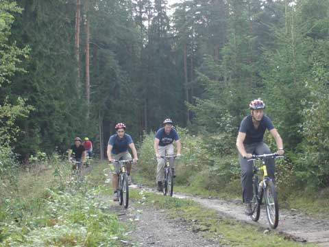 Group mountainbiking on a forest road